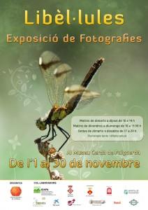 Cartell Expo Libèl·lules